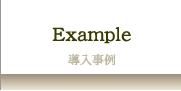 株式会社エデュワークスコンサルタンツEXAMPLE